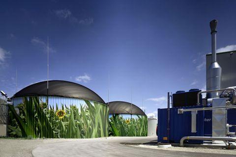 Biogas: Kann Gas grün sein?