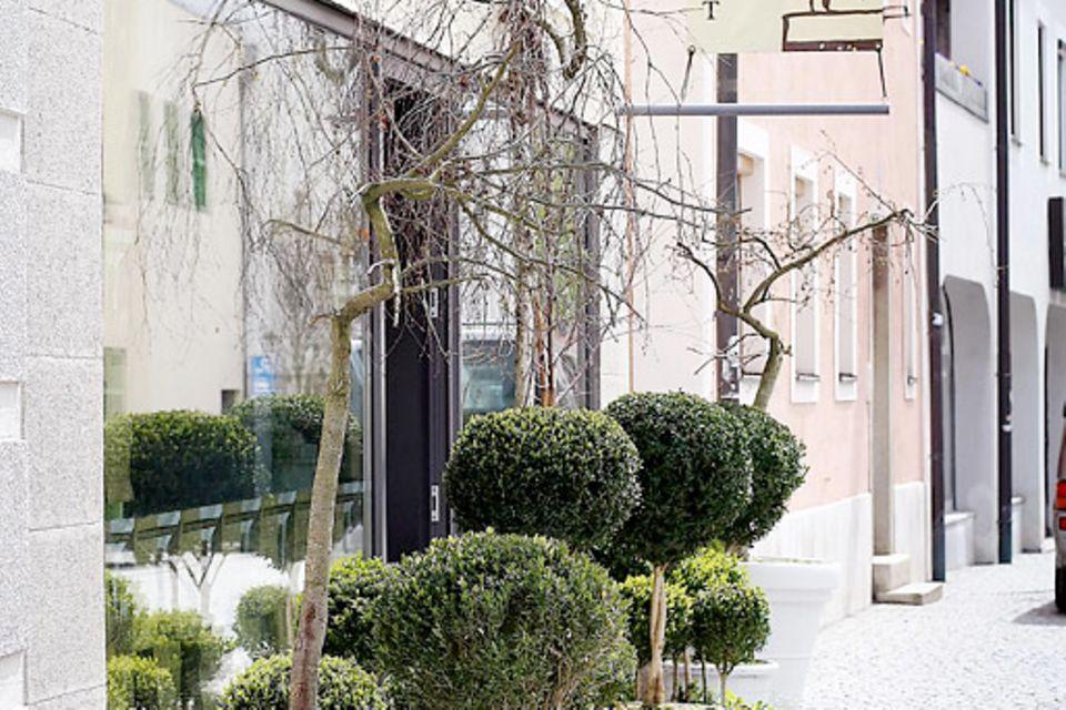 Yvonnes Passau-Tipp: Blumenwerkstatt