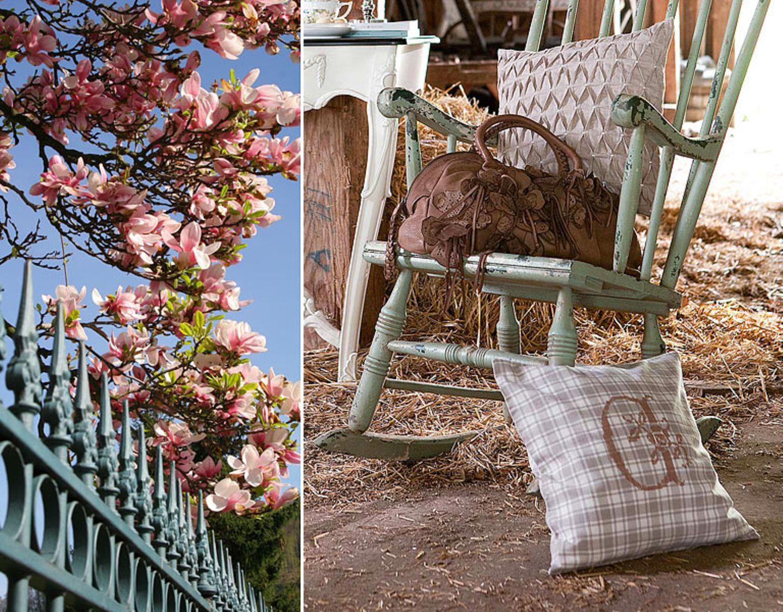 Magnolie: dezentes Rosé