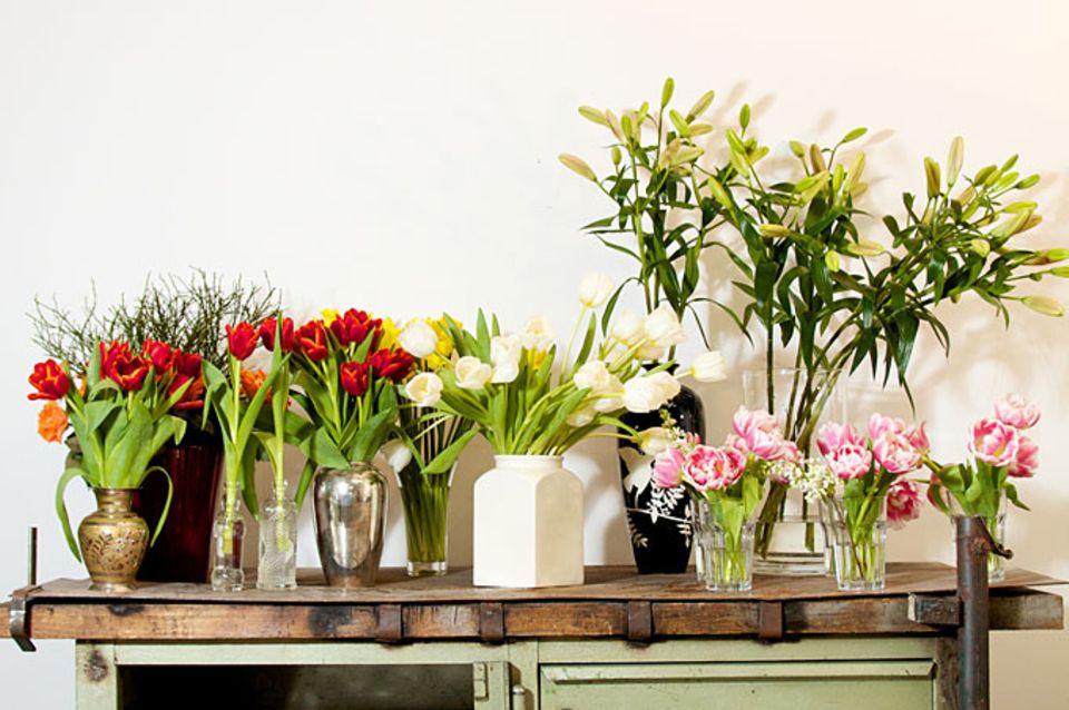 Welche Vase für welche Blume: Vasen-Guide von zwei Experten
