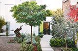 Gartenideen für den Vorgarten - Bild 16