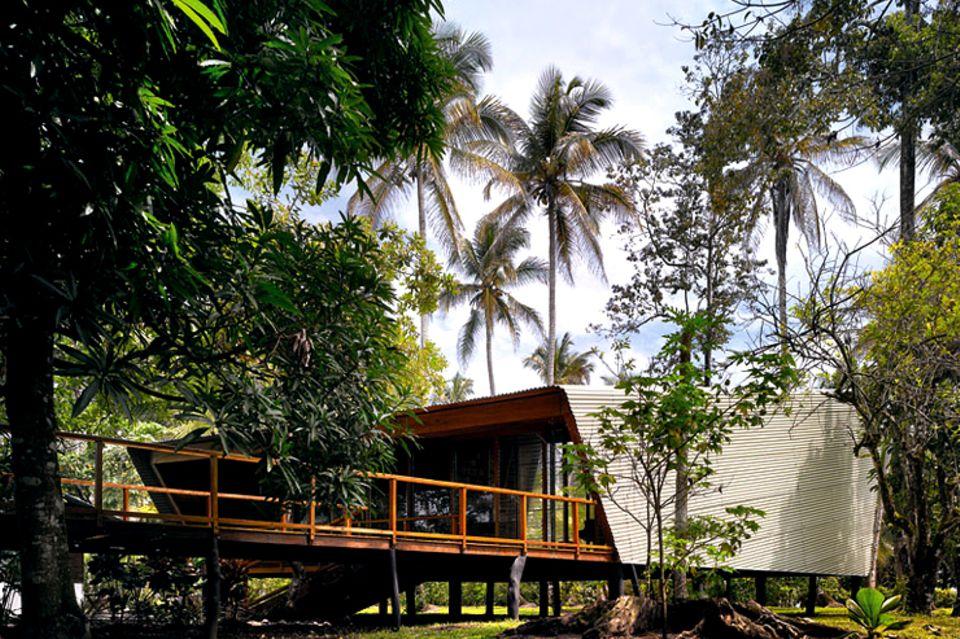 Zwei Pavillons auf Pfählen im Urwald