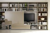 """TV- und Bibliotheksystem """"Mega-Design"""" von Hülsta"""