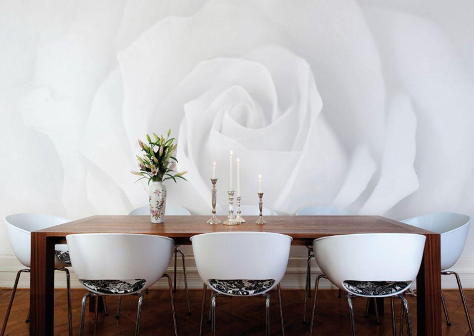 """Fototapete """"Rose"""" von bedruckte-tapete.de lässt sich ganz nach Wunsch in Höhe und Breite konfigurieren."""