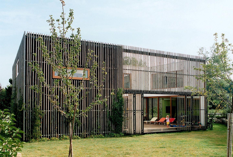 Flachdachhaus mit grünem Blättergewand
