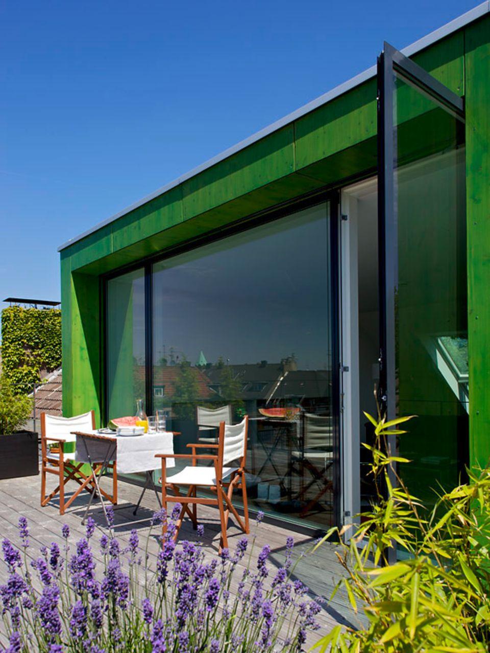 Ein Minigarten auf der Dachterrasse