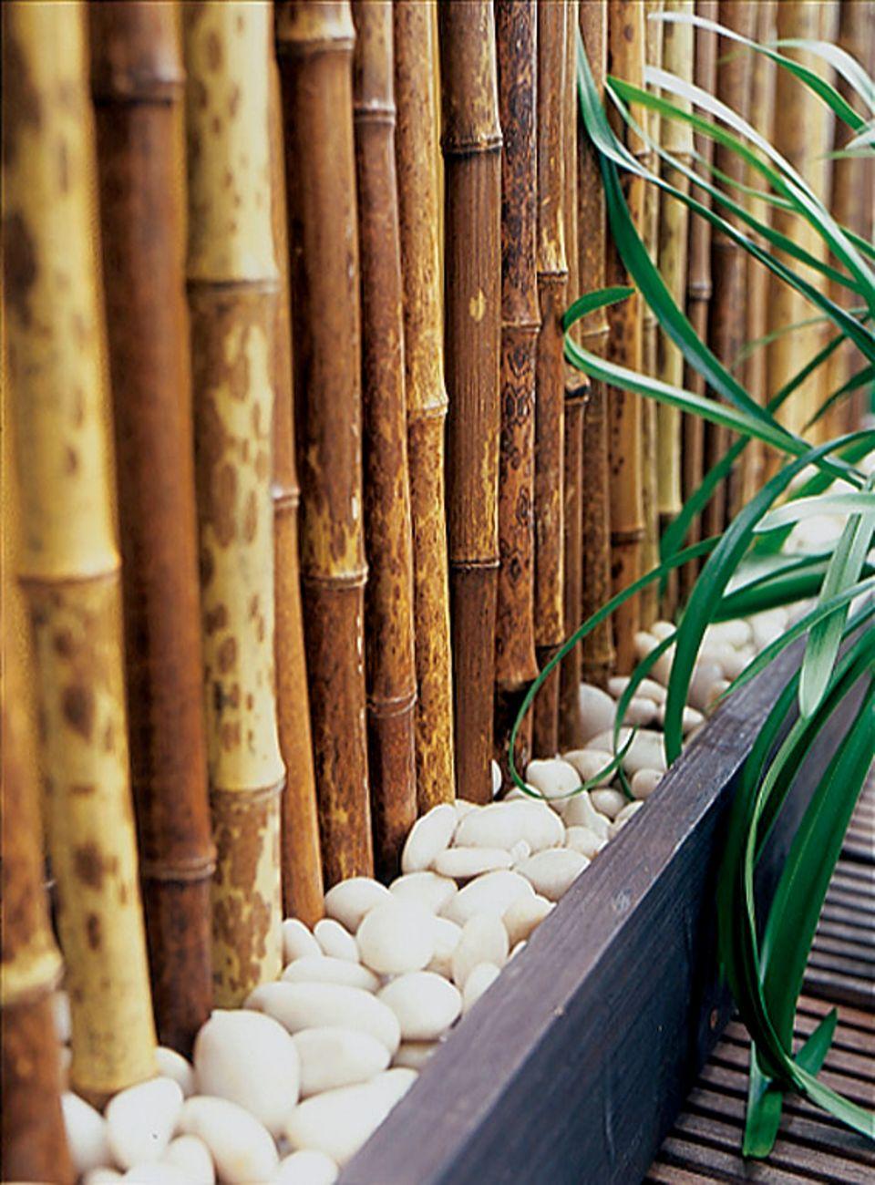 Selbstgemachter Balkonsichtschutz mit Blumenkästen, großen Kieseln und Bambusstangen.