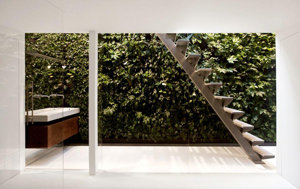 Ein Wandgarten funktioniert auch als eine Alternative zum Fenster.