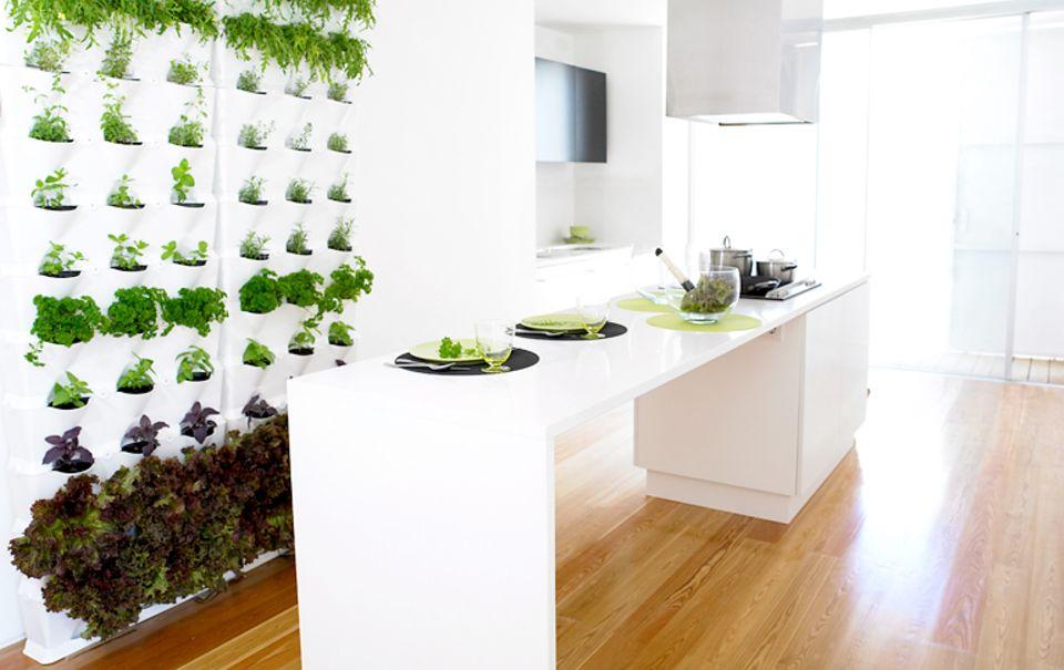 Gewürze stets im Griff: Wandgarten mit Küchenkräutern.
