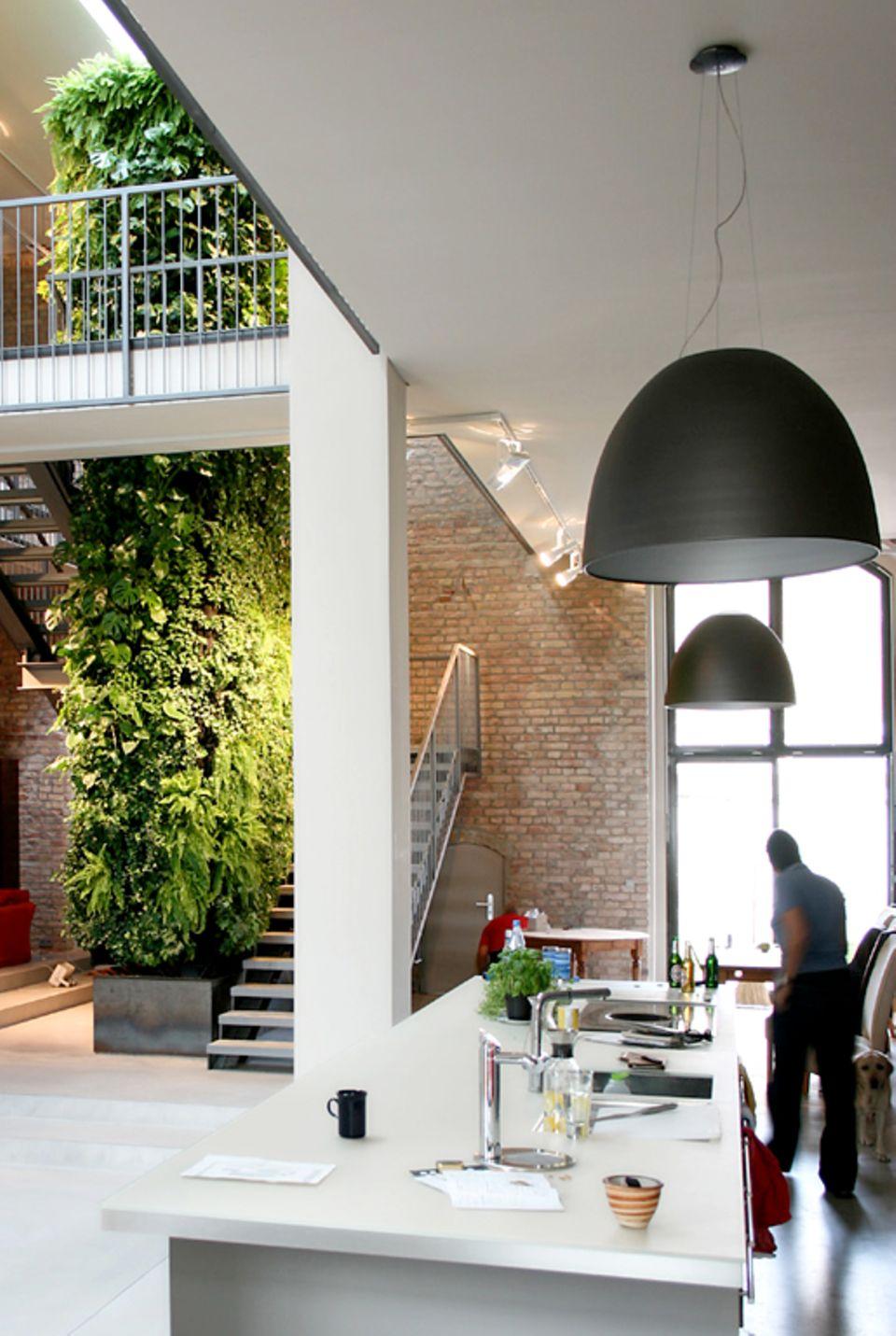 Für ein besseres Klima: Mit seinen Pflanzen verbessert jeder Wandgarten die Raumluft nachhaltig.