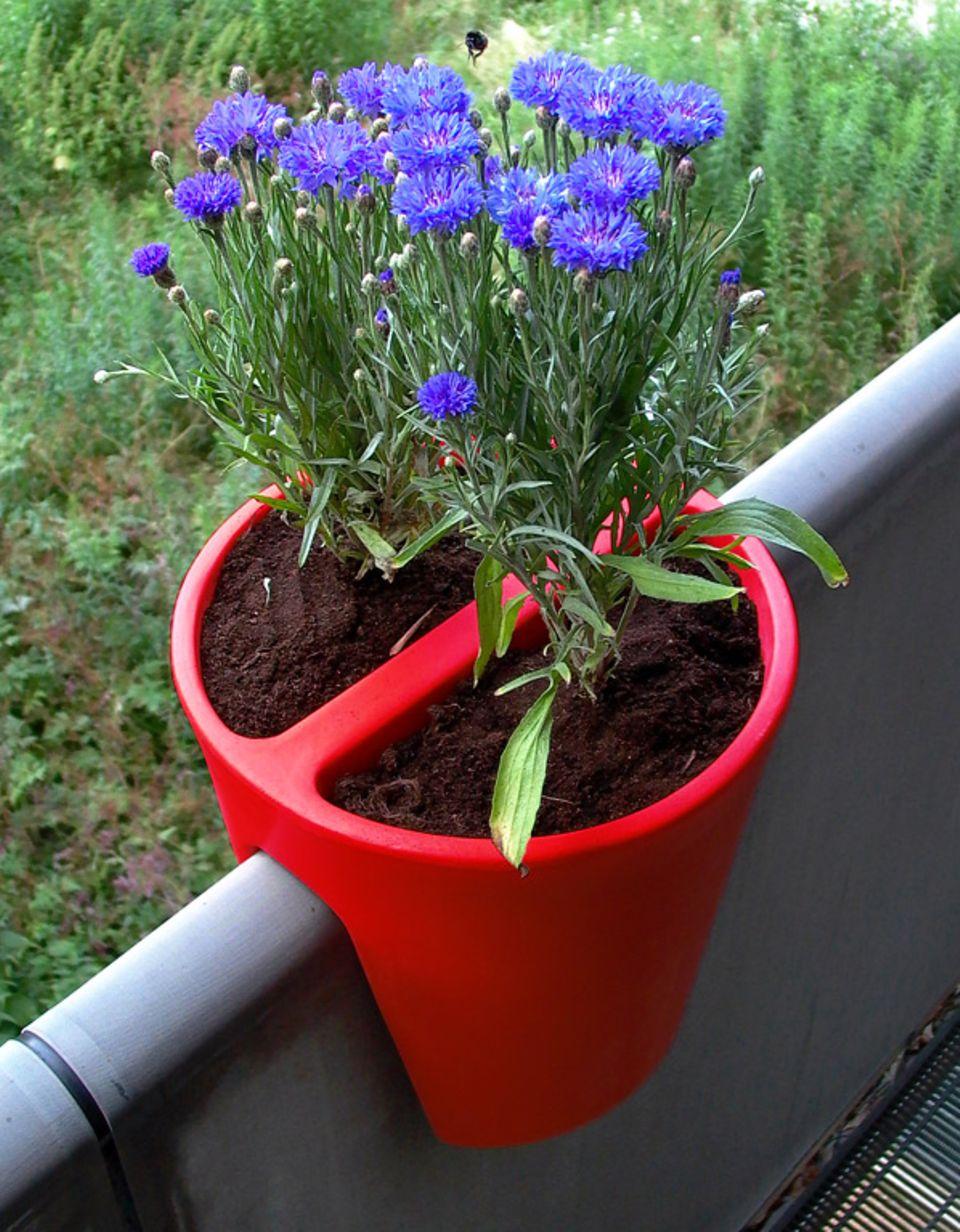 """Blumenkasten """"Steckling"""" aus der Serie """"On-the-Edge"""" von rephorm"""
