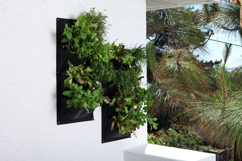 """Pflanzentaschen """"Verti-Plant"""" von Burgon & Ball"""