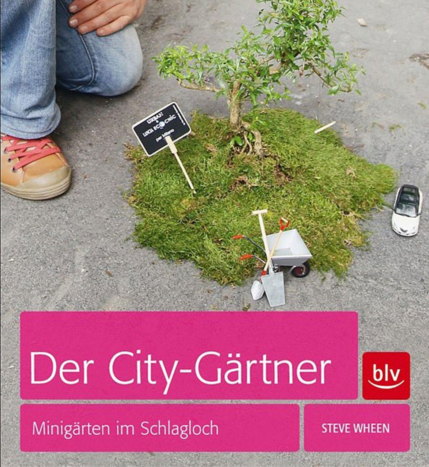 """Guerilla-Gardening im Miniformat: """"Der City-Gärtner"""" von Steve Wheen"""