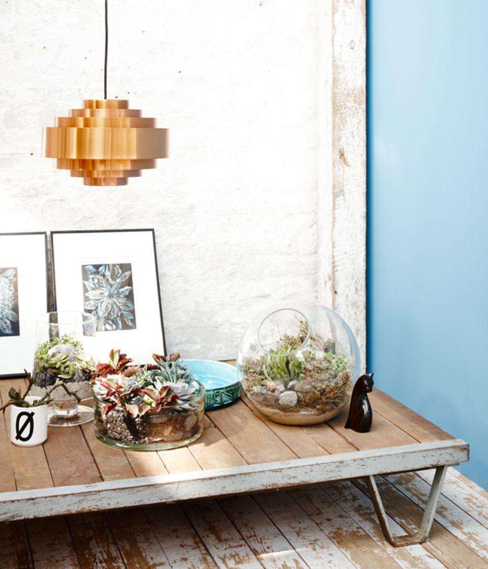 Tipp: Bilder mit passenden Pflanzenmotiven einfach an die Wand lehnen. So kann man sie ohne großen Aufwand umstellen.