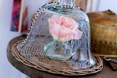 Geschliffene Glashaube von Bloomingville