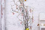 Adventskalender aus Pflanzenzweigen
