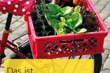 """Trendgärtnern in der Stadt: """"Das ist Urban Gardening!"""" von Karen Meyer-Rebentisch"""