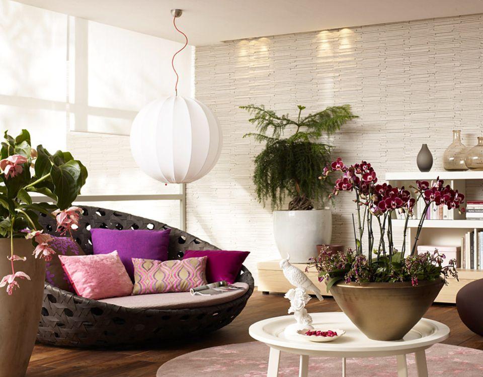 Wohnen mit Pflanzen für die tägliche Erholung: im runden Sofa relaxen zwischen Pflanzenschönheiten aus fernen Ländern.
