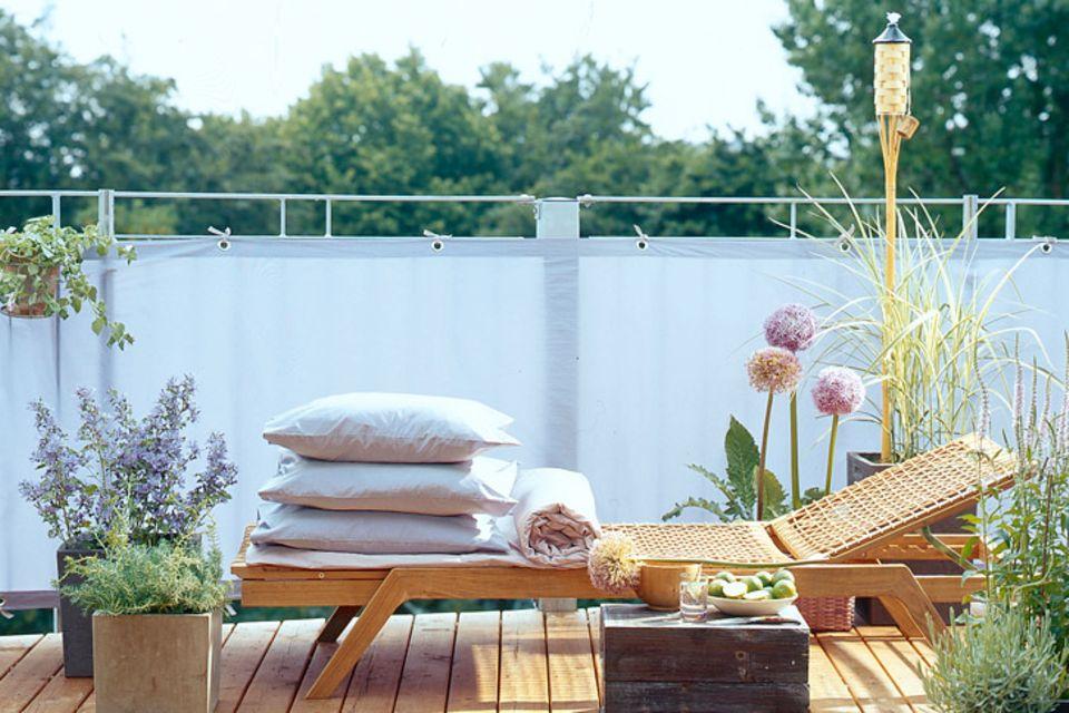 Balkonpflanzen: Für jeden Balkon die passende Pflanze