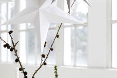 Papiersterne in gedeckten Farben