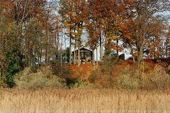 Haus zwischen hohen Bäumen