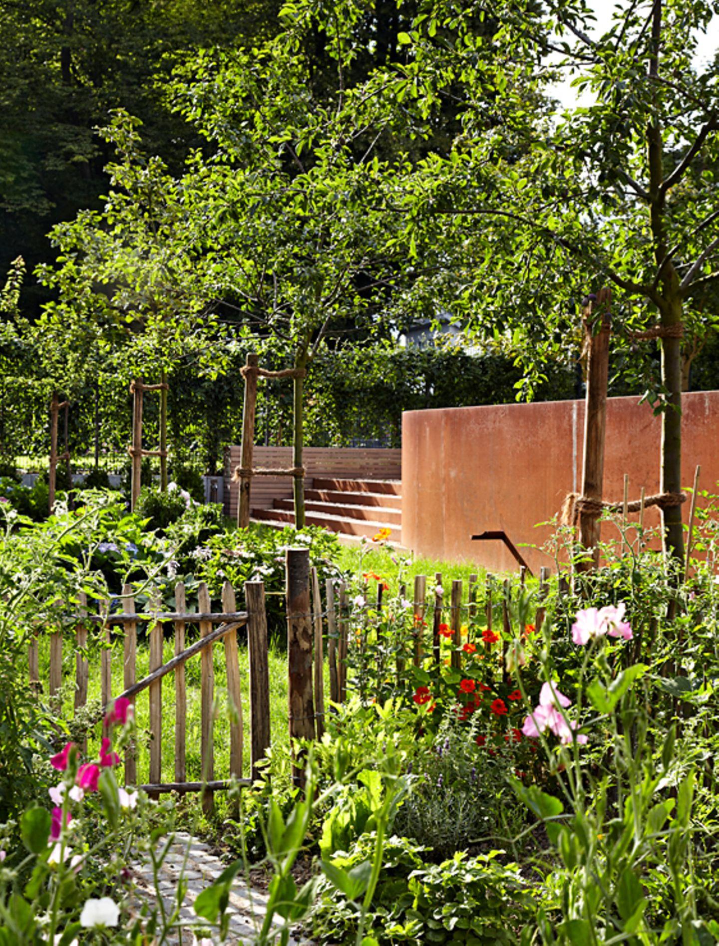 Kontrast im Garten