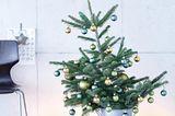 Weihnachtebaum im Zinkeimer