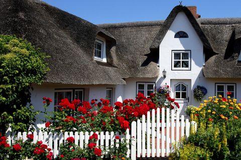 Landhaus mit Reetdach und blumenbepflanztem Holzzaun
