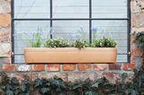 Windowgreen Blumenkasten von Rephorm
