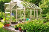 Gartengewächshaus aus Glas im Grünen