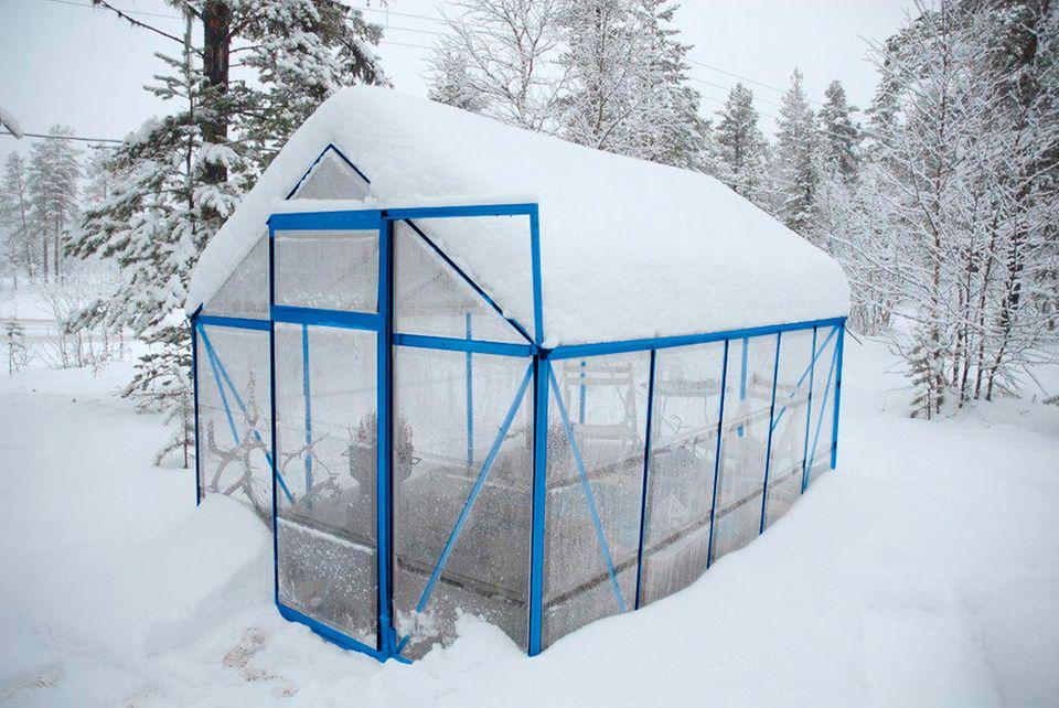 Gartengewächshaus im Winter
