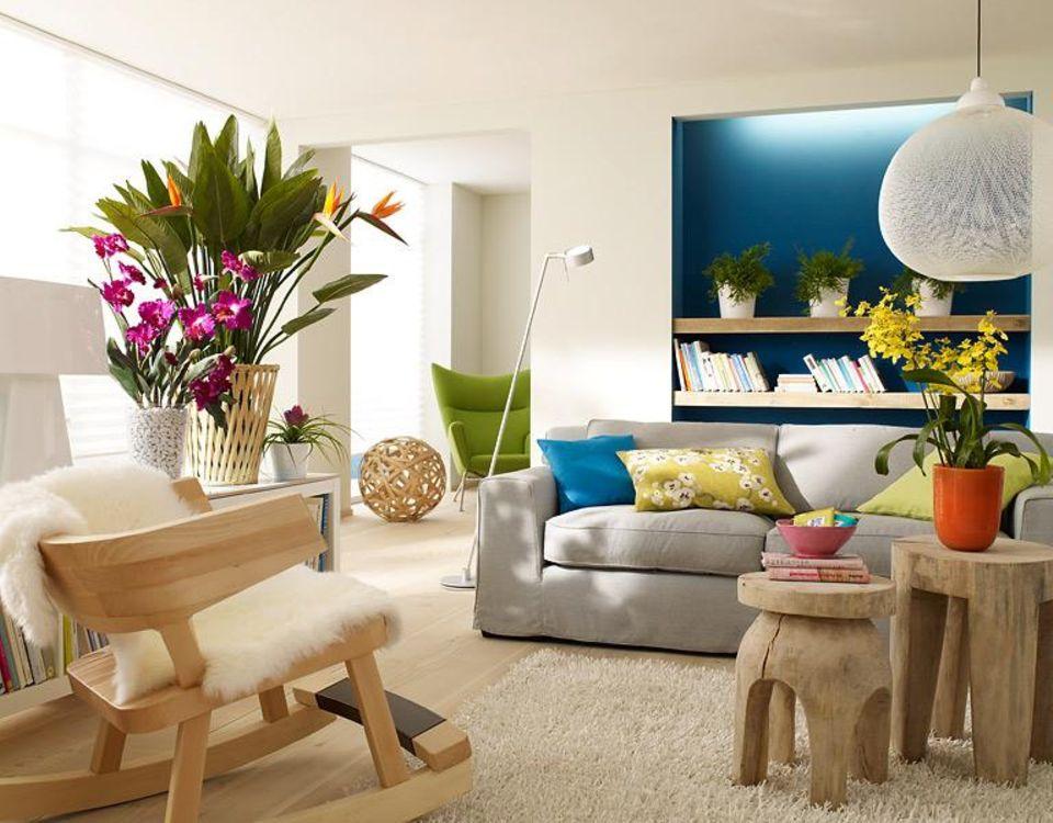 Zimmerpflanzen mit hellen Möbeln aus Holz.