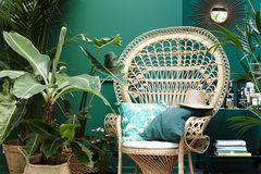 Geliebtes Grünzeug: Holz, Bast und Grünes sind das Dream-Team fürs Zuhause