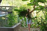 Costa Rica: Hangvilla auf Stahlstelzen - Kieselsteingarten