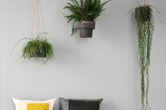"""Pflanzenhänger """"Plant"""" von Ferm Living"""