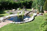 Gartenteich mit Steg bei Sonnenschein
