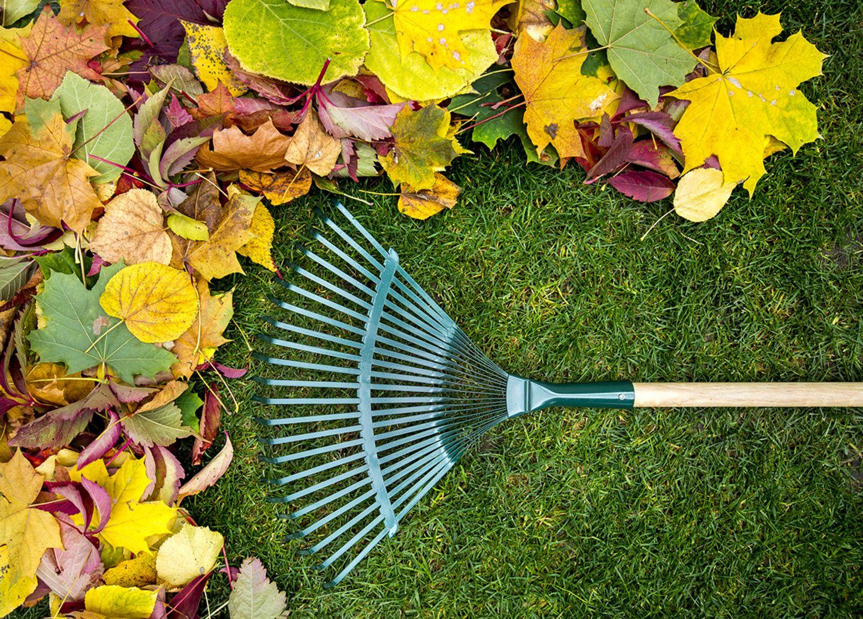 Gartengeräte und was sie können - der Rechen