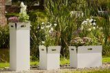 """Pflanzkübel """"Box"""" von Flora, Wilhelm Förster GmbH"""