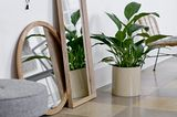 """Spiegel """"Mirror Bamboo und Pinie"""", Bloomingville"""