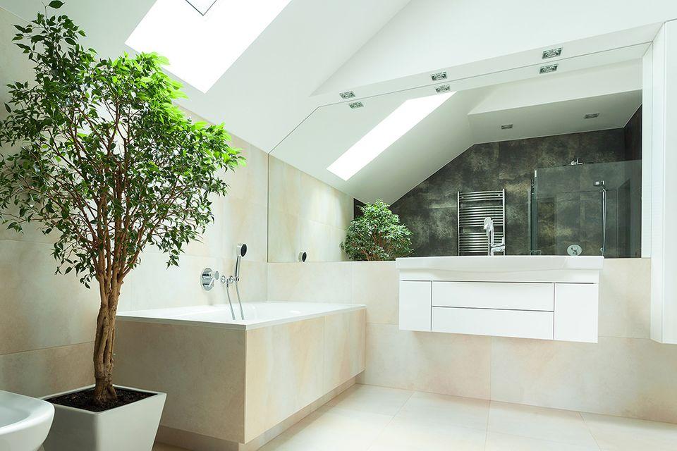 Badezimmer mit Grünpflanzen