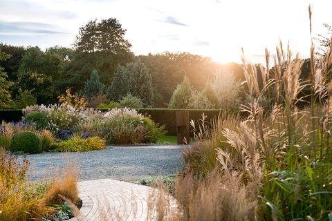 Ein bunt blühender Garten mit Gräsern, Stauden und Kiesbeet im Sonnenuntergang