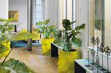 Kübelköpfe im Eingangsbereich: Sapey-Design