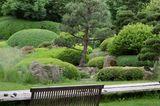 Japanische Kuchenbäume im Schaugarten
