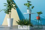 """Blumenkasten """"Savannah"""" von Made aus Terrazzo-Stein"""