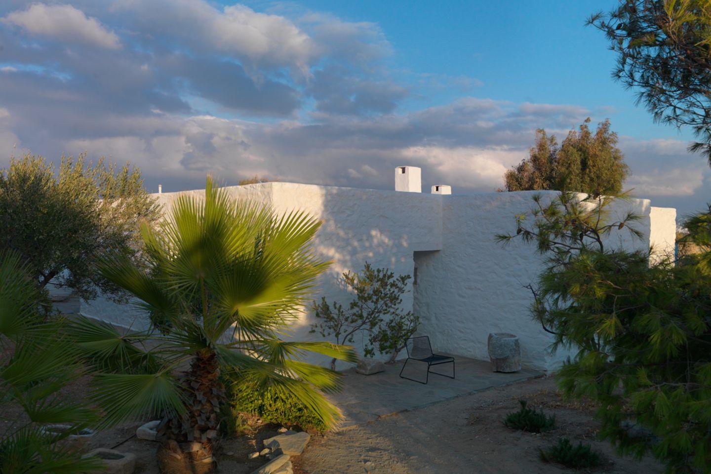 Ferienhaus hinter Pinien und Palmen auf Paros