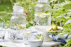 Gartenparty mit selbstgemachter Limonade