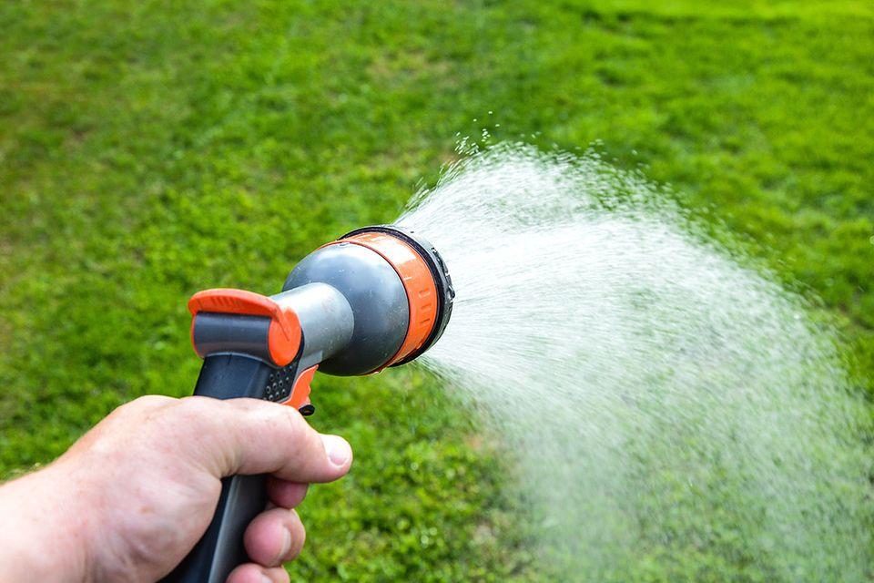 Tägliche Gartenarbeit: Rollrasen bewässern