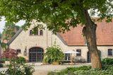 Walnussbaum auf dem Gutshof