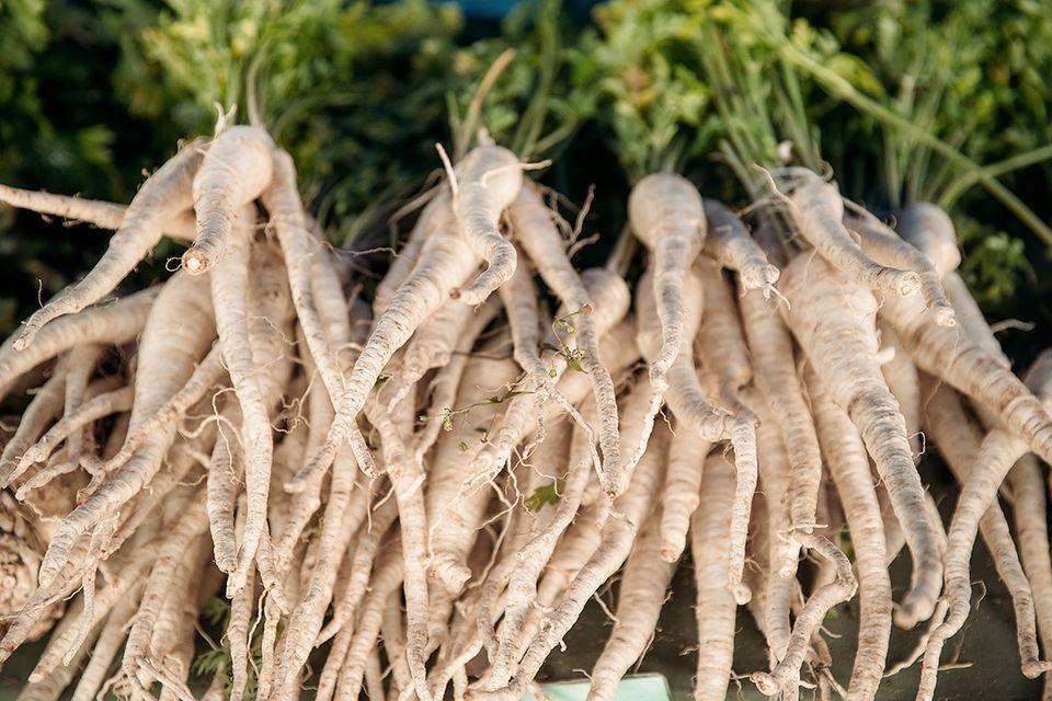 Pastinake (Pastinaca sativa) Gemüse