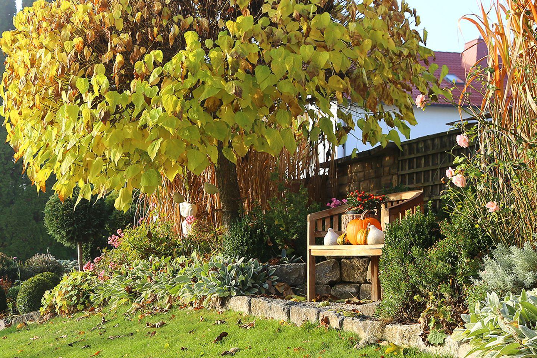 Gartenkalender Oktober: Goldener Herbst mit Kürbis